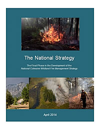 Cover of The National Strategy: The Final Phase in the Development of the National Cohesive Wildland Fire Management Strategy