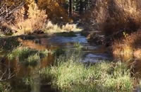 Clear Creek located in Lassen County, in northeastern California.