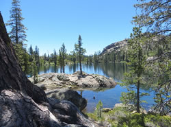 Forest lake scene from the Plumas National Forest.