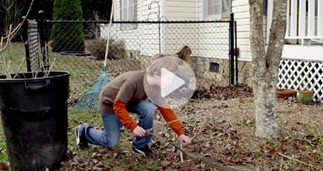 FAC Hero Video start scene, displaying a family removing leaves from their yard.